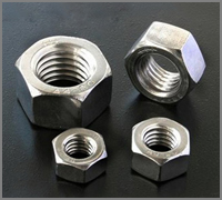 Stainless Steel 310L Hex Nuts